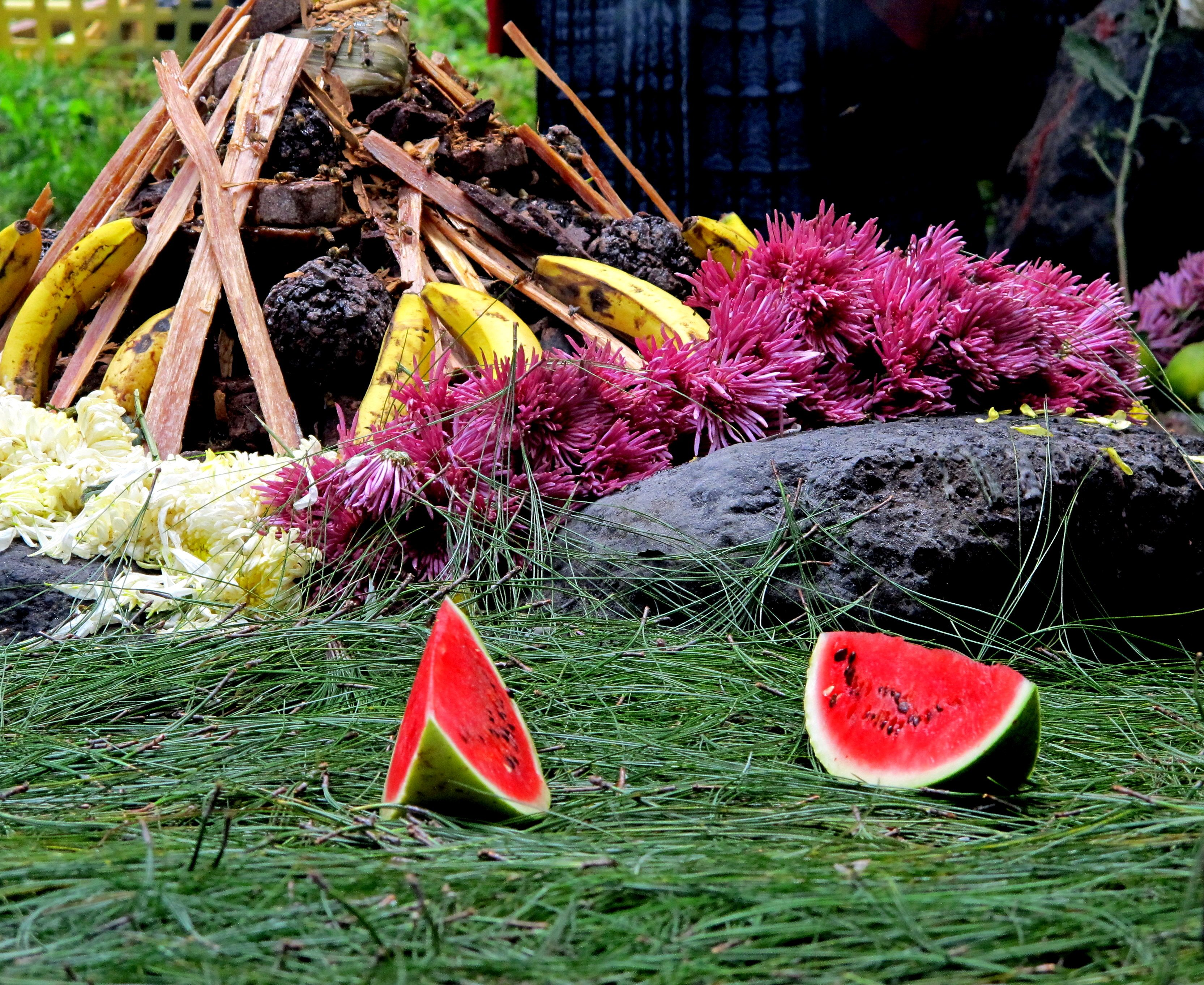 Mayan, summer solstice, ceremony, Maya, Guatemala, fruits, fire, flowers