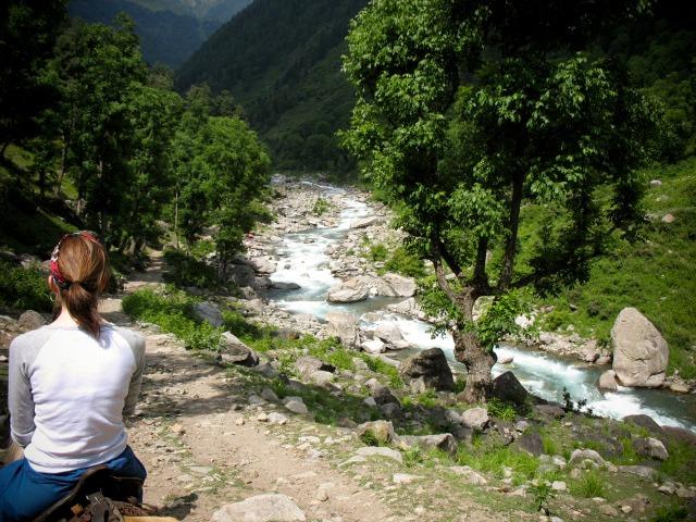 Ponies, Practice Hike, Himalayas, Kashmir, India