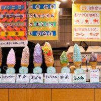 Tokudai Soft Cream, soft cream, ice cream, desserts, sweets, Japan, Tokyo, Nakano, Nakano Broadway, Japanese, デイリーチコ, big, giant, super-sized