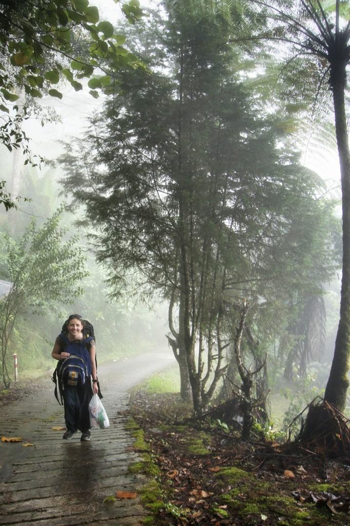 Road to Kinabalu Mountain Lodge