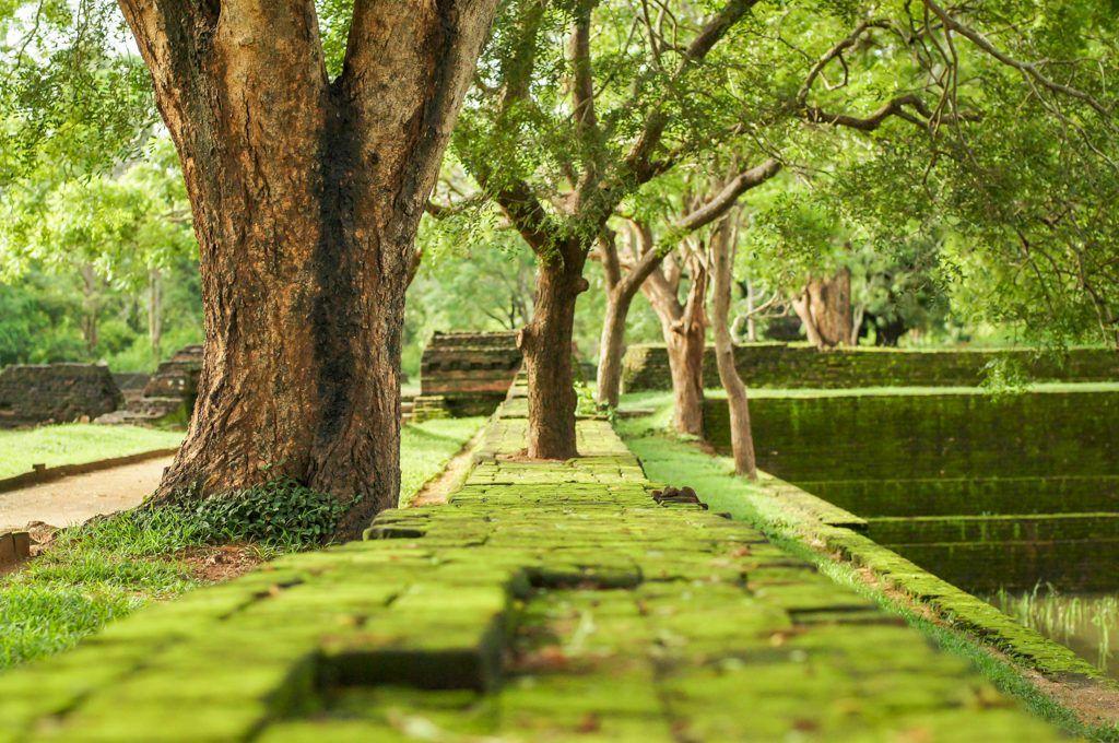 My Sri Lanka - Sigiriya