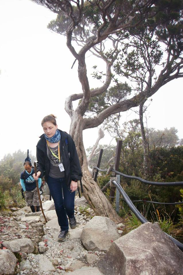 The author proceeding up rocky terrain with trees and shrubs on either side of the trail.