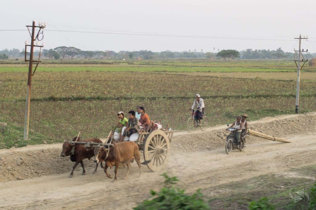 Slow Train from Thazi scenery