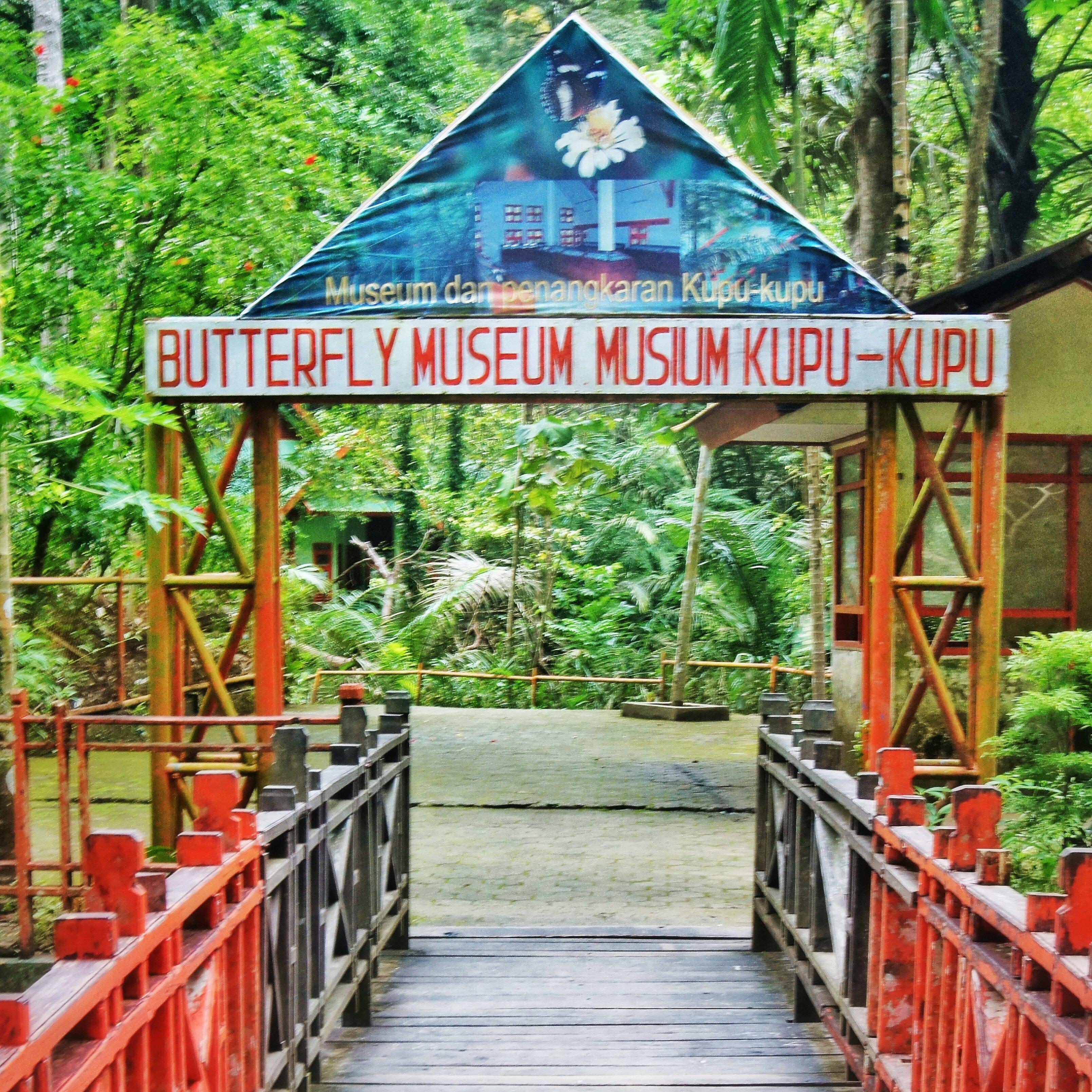 Bantimurung Butterfly Museum.