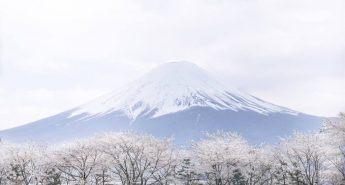 Climbing Mount Fuji: Your Ultimate Climbing Guide