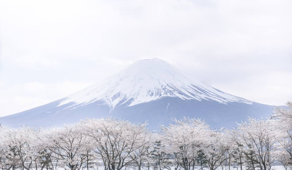 Climbing Mount Fuji: Your Ultimate Climbing Guide