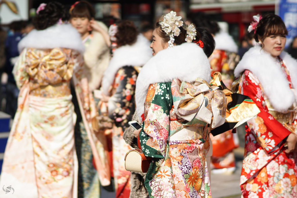 A Japanese woman stands side-on to the camera in her furisode kimono, showing her elaborate hair accessories, large obi bow and her coordinated bag on her forearm. Other women similarly dressed for Japan's Coming of Age Day stand to her side and in the background.