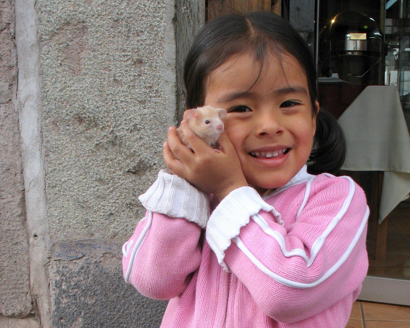 A Taste of Peru: Eating Guinea Pig