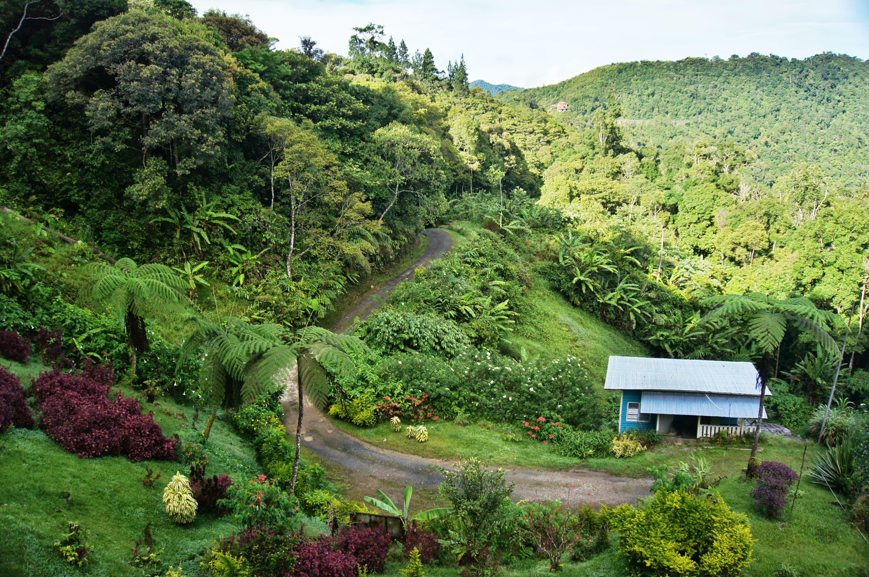mt kinabalu climb accommodation kinabalu mountain lodge