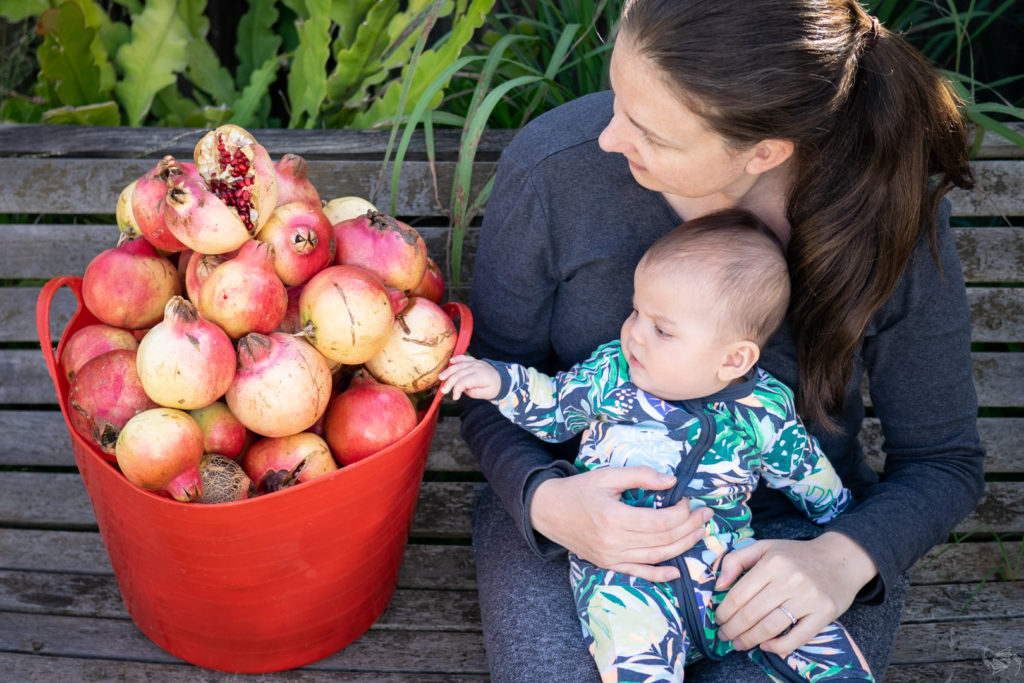 Jessica sits next to an overflowing bucket of pomegranates with baby on her lap, who has an arm outstretched to touch the fruit.