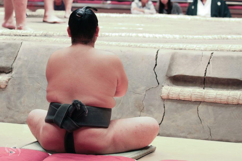 sumo tournament japan dohyo rikishi
