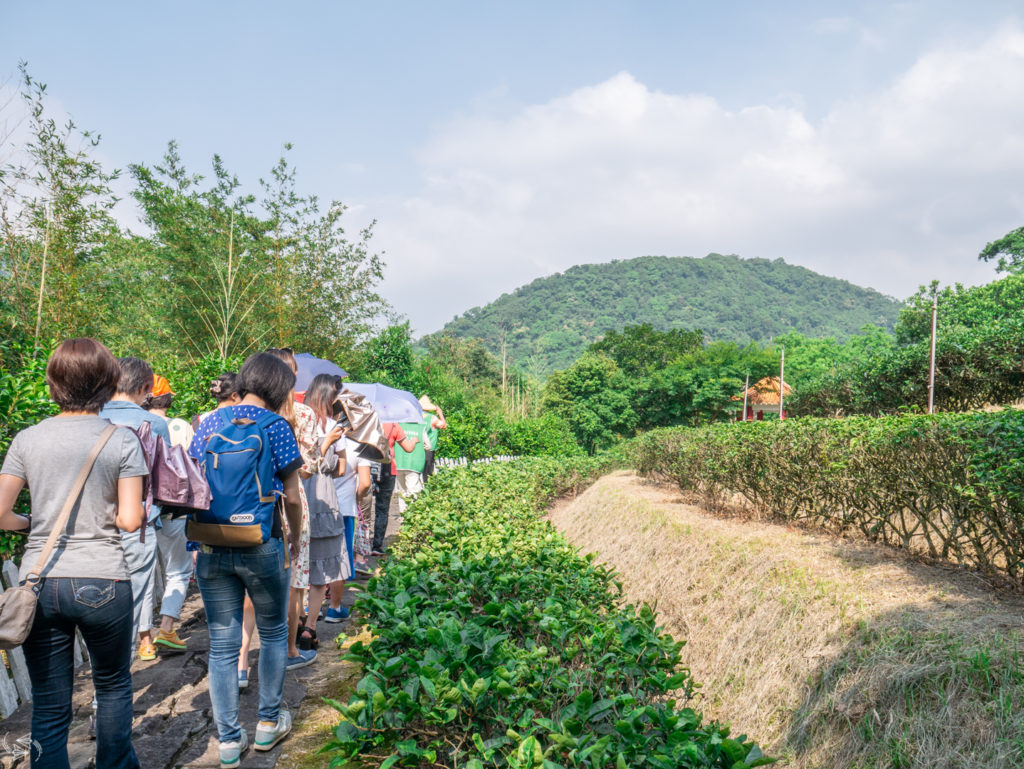 Tea Promotion Center Tour Maokong Tea Plantations